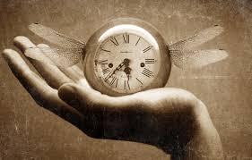 Time Flies