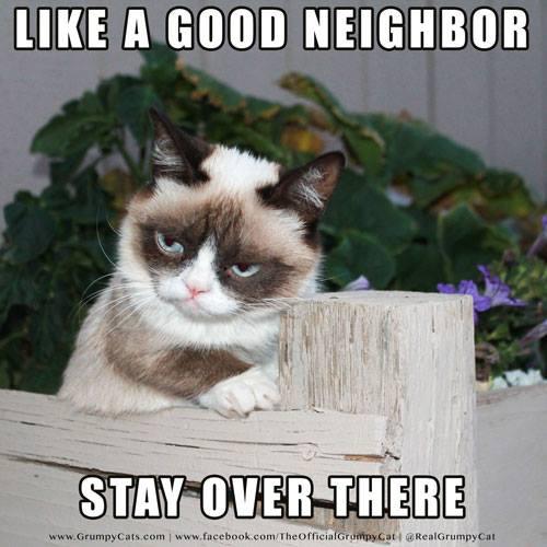Grumpy Cat Fence